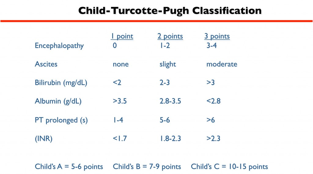 Chil_Turcotte-Pugh Scale