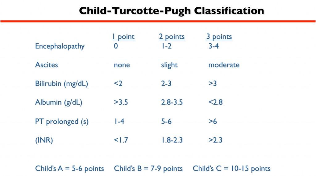Chil_Turcotte-Pugh Scale